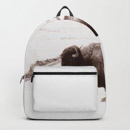Bison 3 Backpack