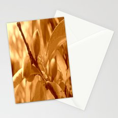 Pattie's Peach Buds Stationery Cards