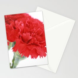 Red Carnation Photography Stationery Cards