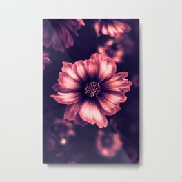 The Beauty Metal Print