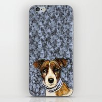 rocky iPhone & iPod Skins featuring Rocky by dogface photography
