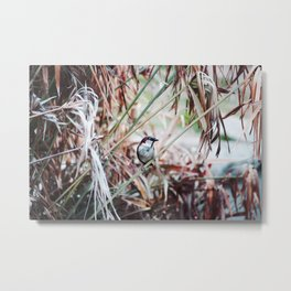 Bird on a Plant Metal Print