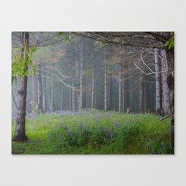 Lupines At The Forest's Edge Canvas Print