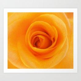 Blossomed by B & BB Art Print