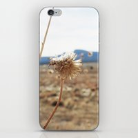 arizona iPhone & iPod Skins featuring Arizona by Kakel-photography