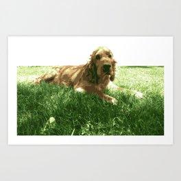 Cocker spaniel dog Art Print