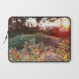 Evening glow in the forest Laptop Sleeve