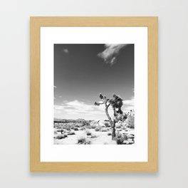 Joshua Tree Nat'l Park Framed Art Print