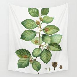 European beech (Fagus sylvatica) from Traite des Arbres et Arbustes que lon cultive en France en ple Wall Tapestry