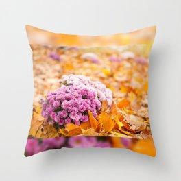 Flowering clump of pink Chrysanths Throw Pillow