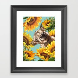 Highland Cow with Sunflowers in Blue Framed Art Print