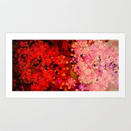 Two Different Worlds -- Floral Pattern Art Print