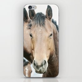 Rugged Country Horses iPhone Skin