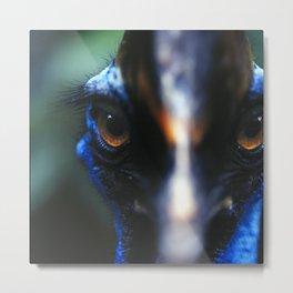 Cassowary Bird Metal Print