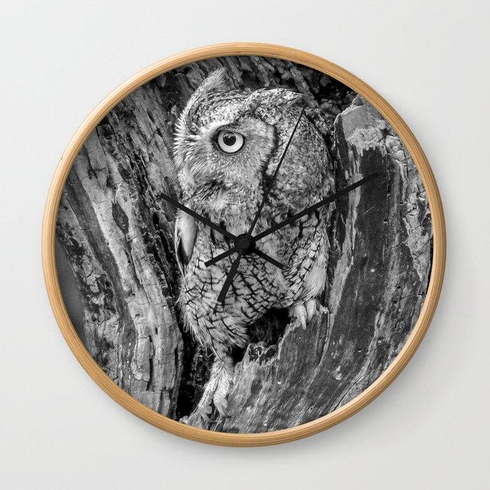 Echo the Screech Owl by Teresa Thompson Wall Clock