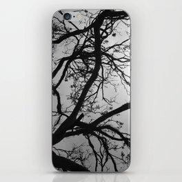 bald tree #1 iPhone Skin