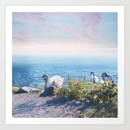 Pastel vibes 37 - Los Cisnes Art Print