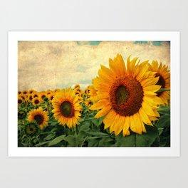 Summer Days Art Print