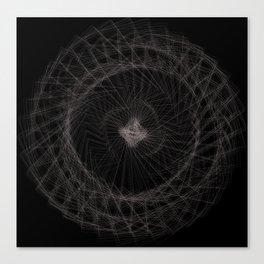 middendorffi Canvas Print