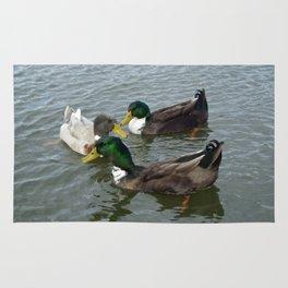 Three Floating Ducks Rug