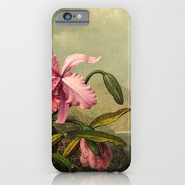 Orchids And Hummingbirds mountainous rainforest landscape painting by Martin Johnson Heade iPhone Case