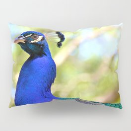 Peacock Pillow Sham