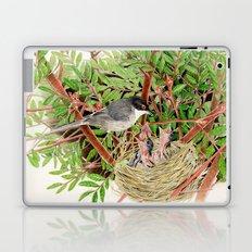 Sardinian Warbler - nesting bird on the Ligurian coast Laptop & iPad Skin