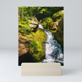 Verdant Waterfall Mini Art Print
