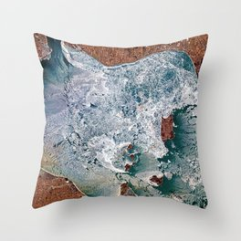 Lake Erie Islands in winter Throw Pillow