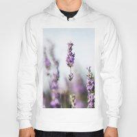 lavender Hoodies featuring Lavender by Julia Dávila-Lampe