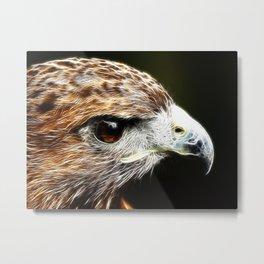 Harris Hawk fractal Metal Print