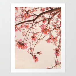 Flowery Trees Photography Art Print