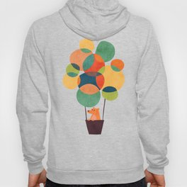 Whimsical Hot Air Balloon Hoody