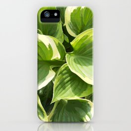 Hosta Plant iPhone Case
