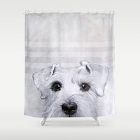 schnauzer Shower Curtains featuring Schnauzer original painting print by MiartDesignCreation