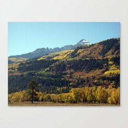 On the Road to Ouray Canvas Print