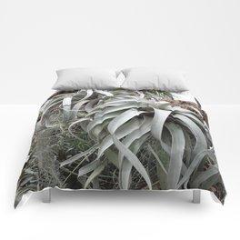 Tillandsia Comforters