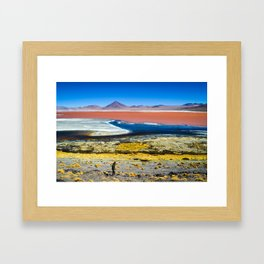 Laguna Colorada Framed Art Print