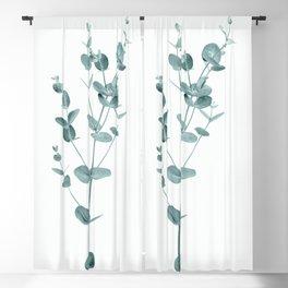 Minimal Eucalyptus Blackout Curtain