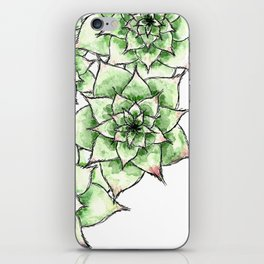 Hens and Chicks iPhone Skin