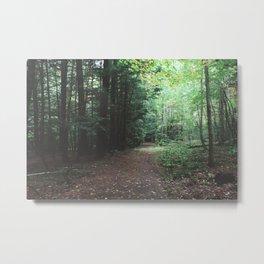 Pfeiffer Arboretum VI Metal Print
