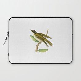 White-Collared Honeysucker Laptop Sleeve
