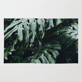 tropical xxvii / hawaii Rug