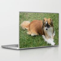 puppy Laptop & iPad Skins featuring Puppy by Steph Lewis