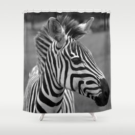 The Zebra of Black and White Shower Curtain