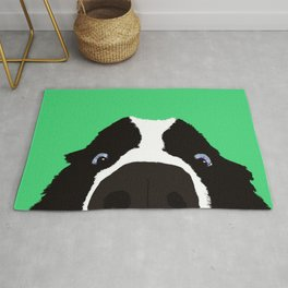 Begging Border Collie Rug