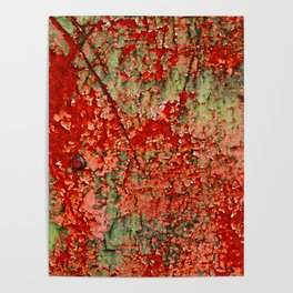 Abstract Red Rust on Green Paint Poster