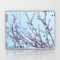 Spring Air Laptop & iPad Skin