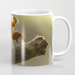 Muda De Exoesqueleto Coffee Mug
