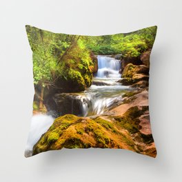 Swiss rapids. Throw Pillow